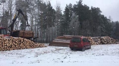Forvarder-Valmet-Metsaraie-1